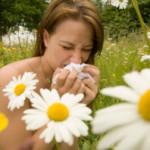 Witryna o alergiach – treść dla alergików