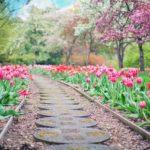 Piękny ,a także estetyczny ogród to zasługa wielu godzin spędzonych  w jego zaciszu w trakcie pielegnacji.